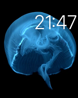 Apple Watch: Motion watch face